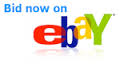 Name:  eBay bid now.png